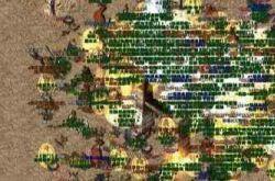超变态传奇65535里道士职业在游戏中受欢迎吗?